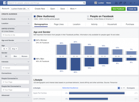 Exemplo de Facebook Audience Insights